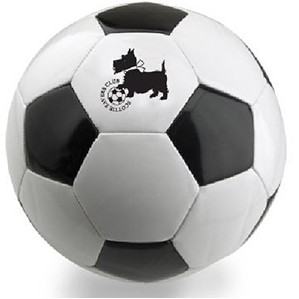 "Official 8.5"" Promotional Soccer Ball (Synthetic Leather)"